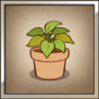 Potted Plant square.png